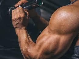 Muscle Formula - in farmacia - Italia - originale