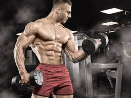 Muscle Formula - ingredienti - funziona - composizione - come si usa