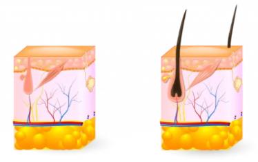 Malemaxin 360 - ingredienti - composizione - funziona - come si usa